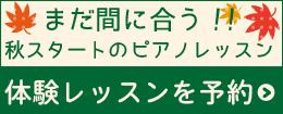 widget_banner_002